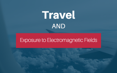 Travel and Exposure to Electromagnetic Fields